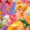 Tinker Bell Fairies Party
